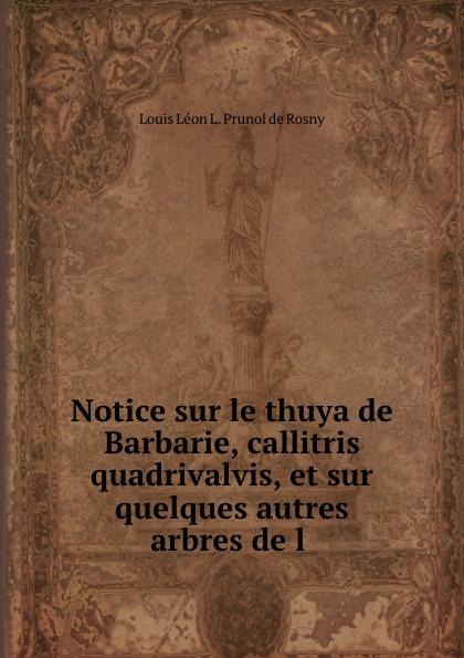 Louis Léon L. Prunol de Rosny Notice sur le thuya de Barbarie, callitris quadrivalvis, et sur quelques autres arbres de l . léon de rosny premieres notions d ethnographie generale classic reprint