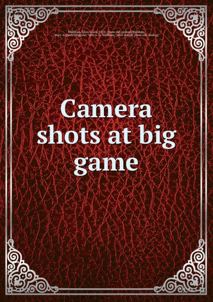 Фото - Allen Grant Wallihan Camera shots at big game micro camera compact telephoto camera bag black olive