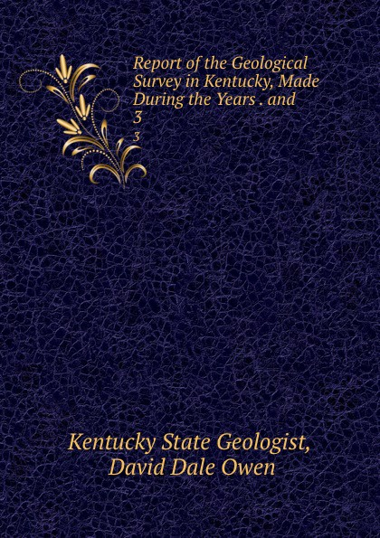 Kentucky State Geologist Report of the Geological Survey in Kentucky, Made During the Years . and . 3