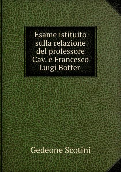 Esame istituito sulla relazione del professore Cav. e Francesco Luigi Botter .