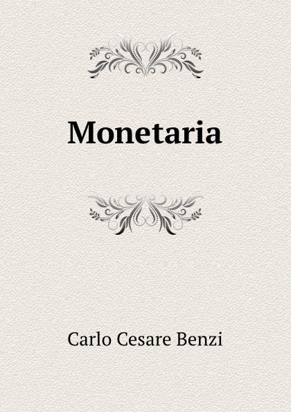 Фото - Carlo Cesare Benzi Monetaria micro camera compact telephoto camera bag black olive