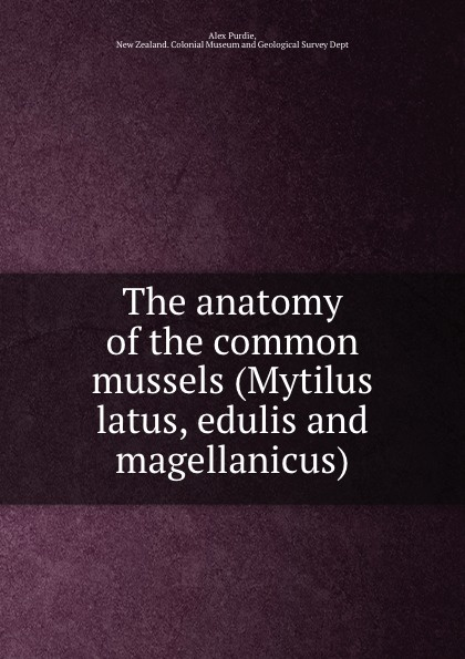 Alex Purdie The anatomy of the common mussels (Mytilus latus, edulis and magellanicus) khat catha edulis forsk