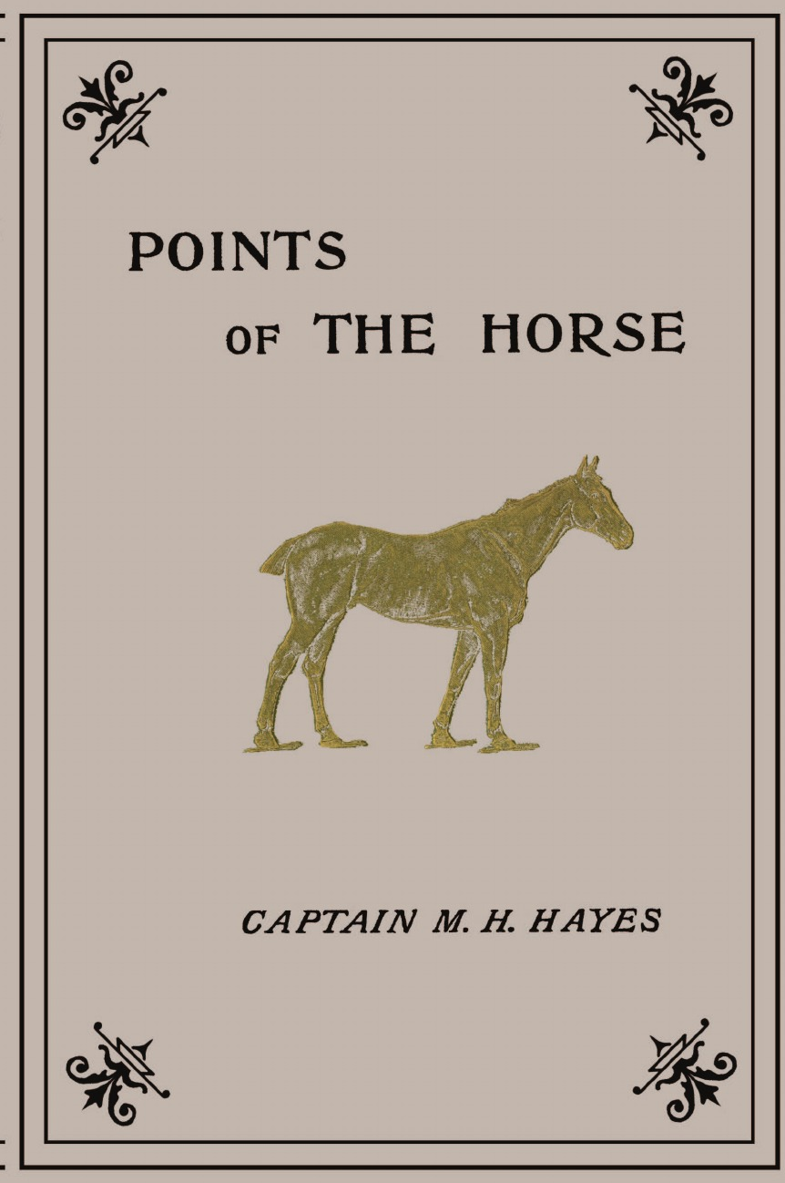 M. Horace Hayes Points of the Horse hayes thad thad hayes the tailored interior