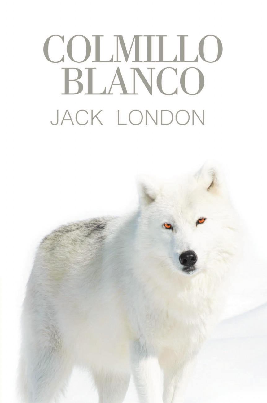 Jack London Colmillo Blanco
