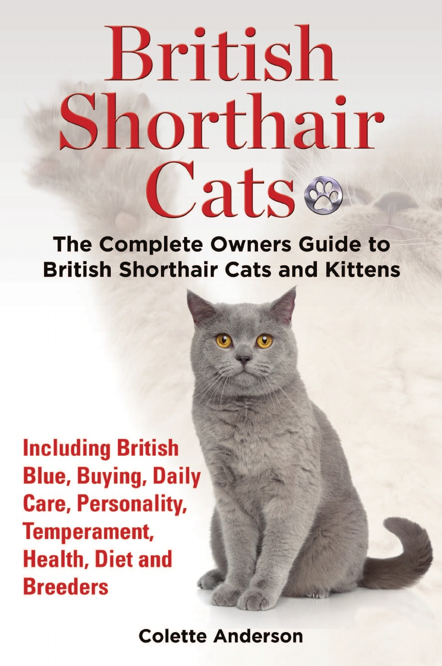 Colette Anderson British Shorthair Cats, The Complete Owners Guide to British Shorthair Cats and Kittens Including British Blue, Buying, Daily Care, Personality, Temperament, Health, Diet and Breeders aeneas anderson a narrative of the british embassy to china in the years 1792 1793 and 1794