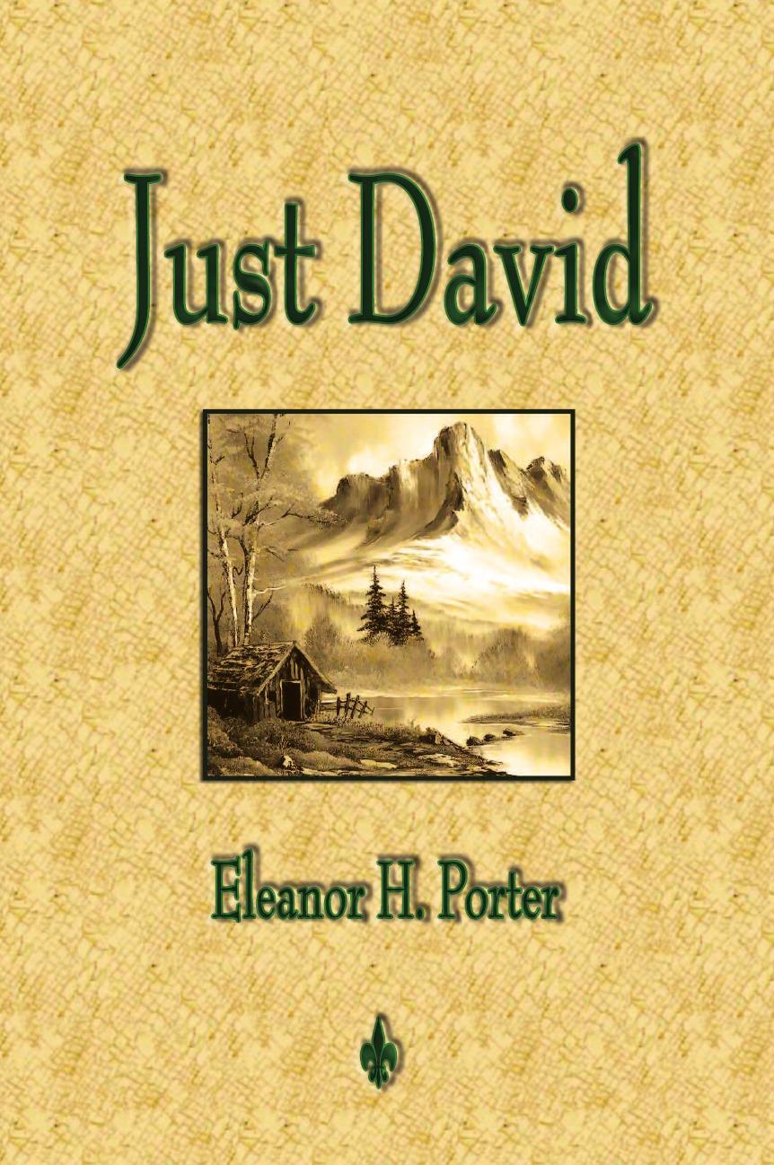 лучшая цена Eleanor H. Porter, Eleanor H. Porter Just David