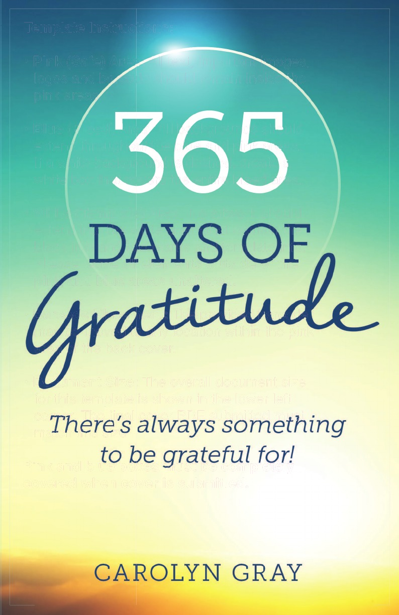 Carolyn Gray 365 Days of Gratitude 100 things to do on a journey