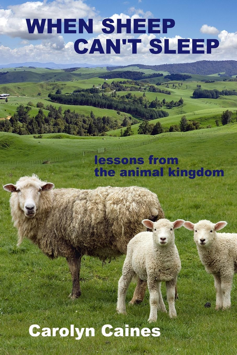 Carolyn Caines When Sheep C Sleep. lessons from the animal kingdom
