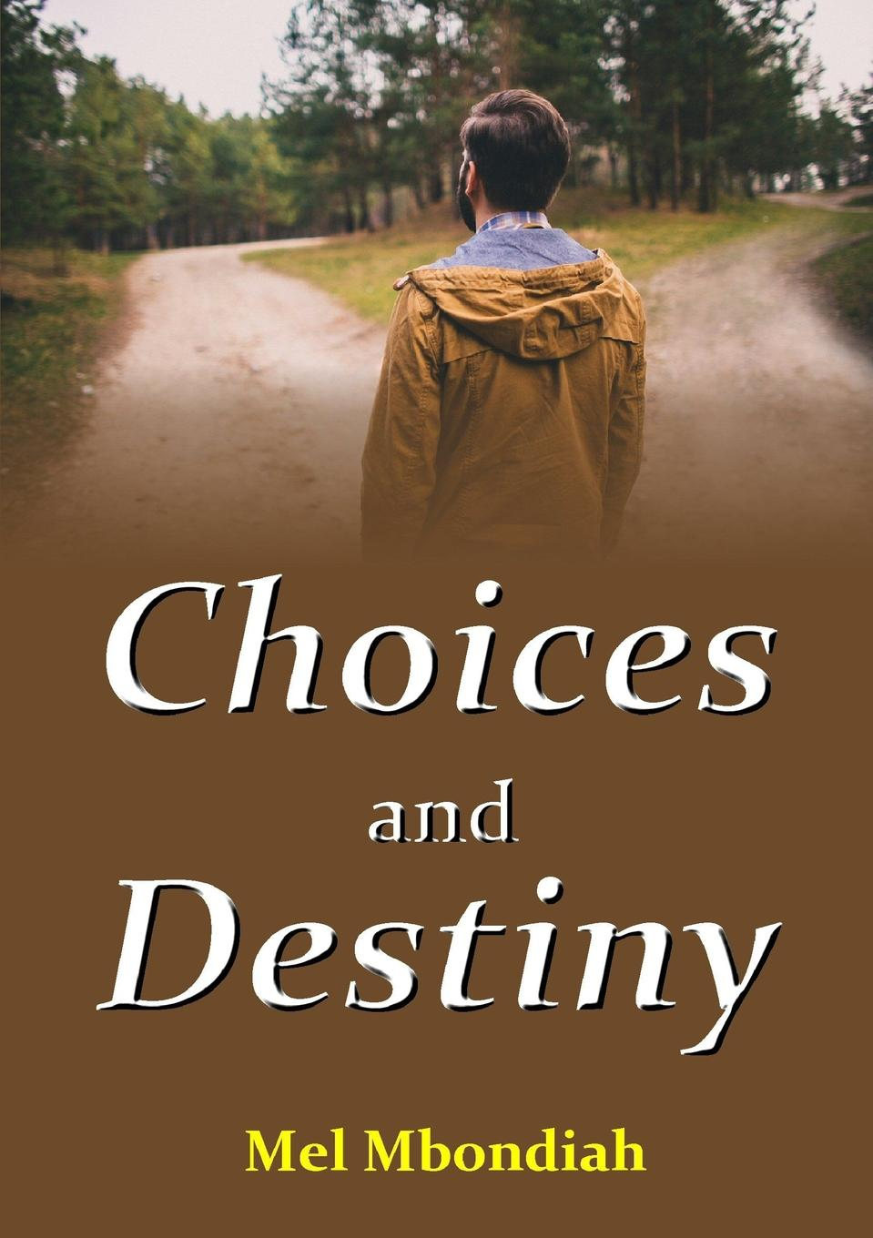 Mel Mbondiah Choices and Destiny john mumford broke what every american business must do to restore our financial stability and protect our future