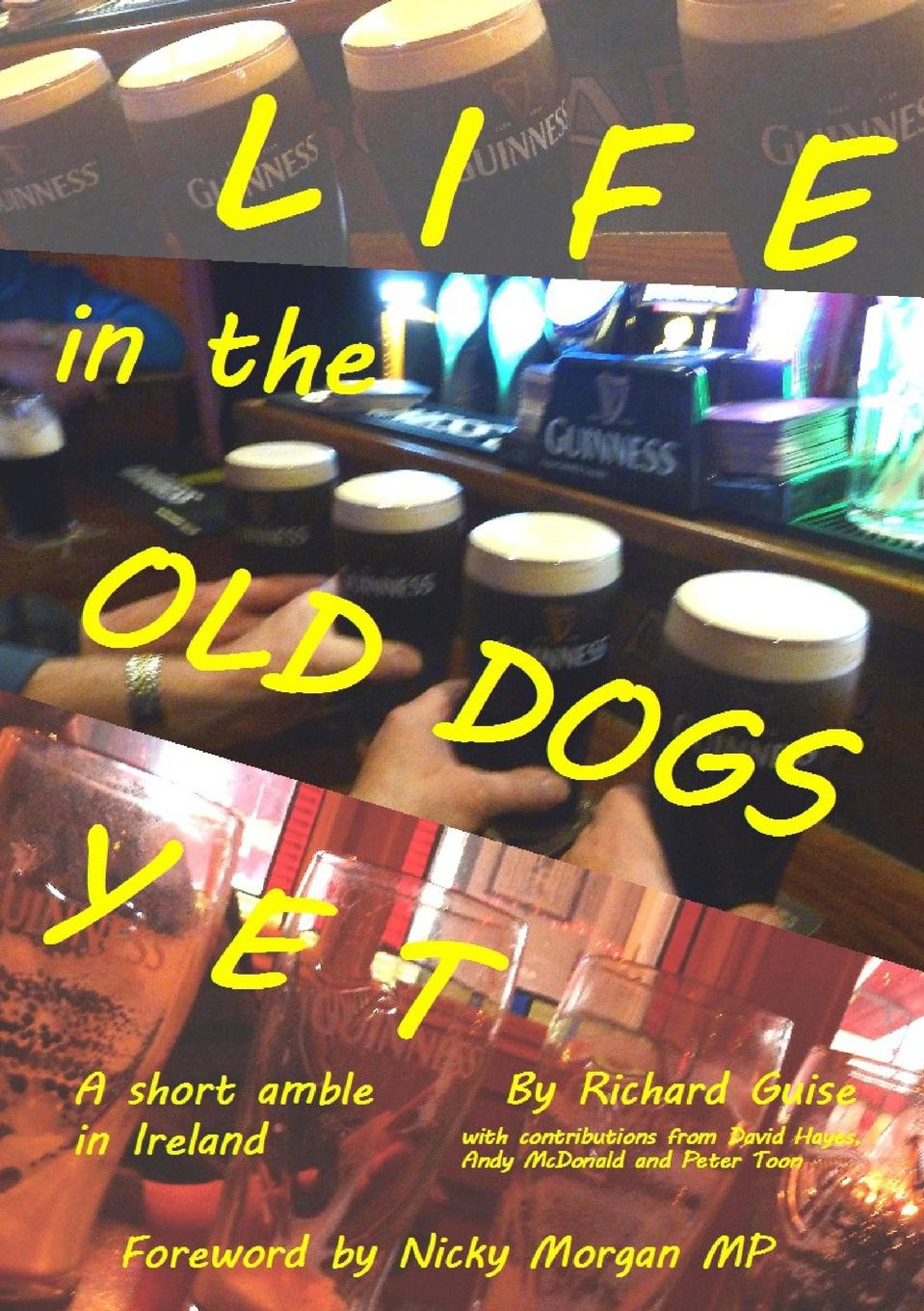 Richard Guise Life in the Old Dogs Yet. a short amble in Ireland missing out a praise of the unlived life