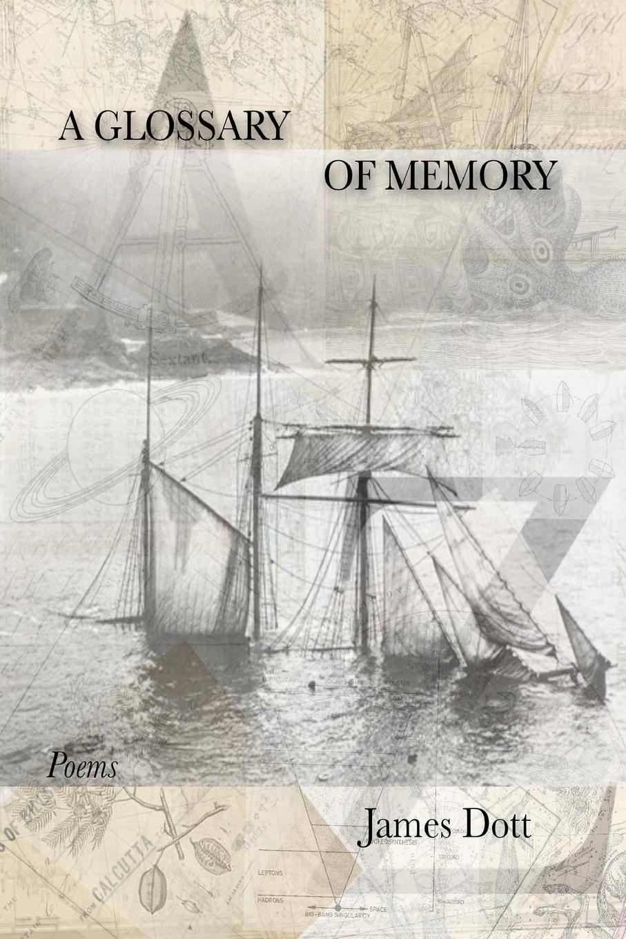 James Dott A Glossary of Memory the memory keeper s daughter
