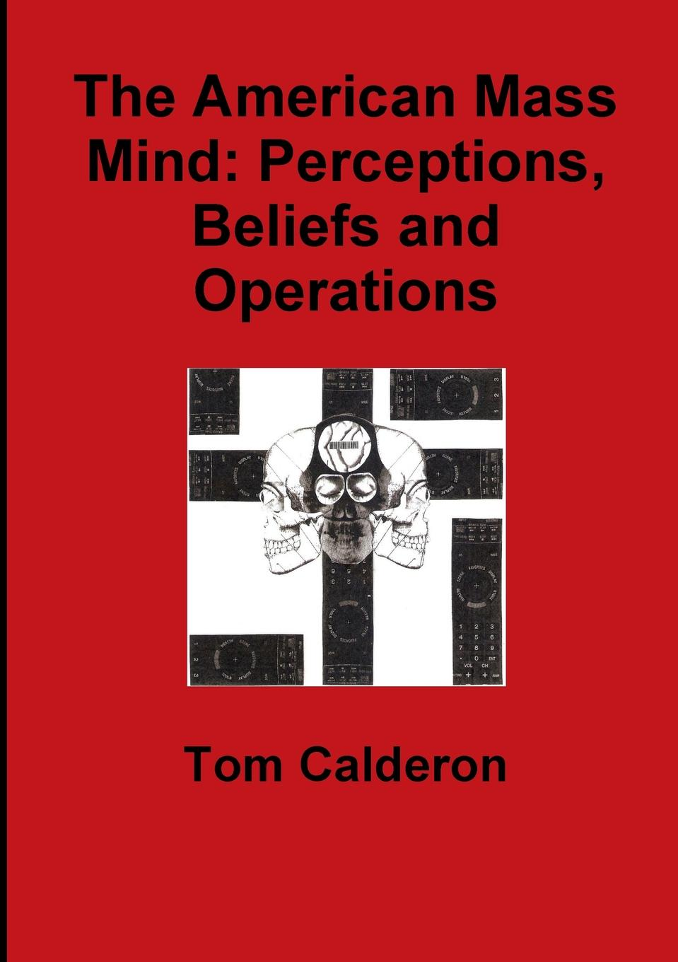 Tom Calderon The American Mass Mind. Perceptions, Beliefs and Operations irrational beliefs