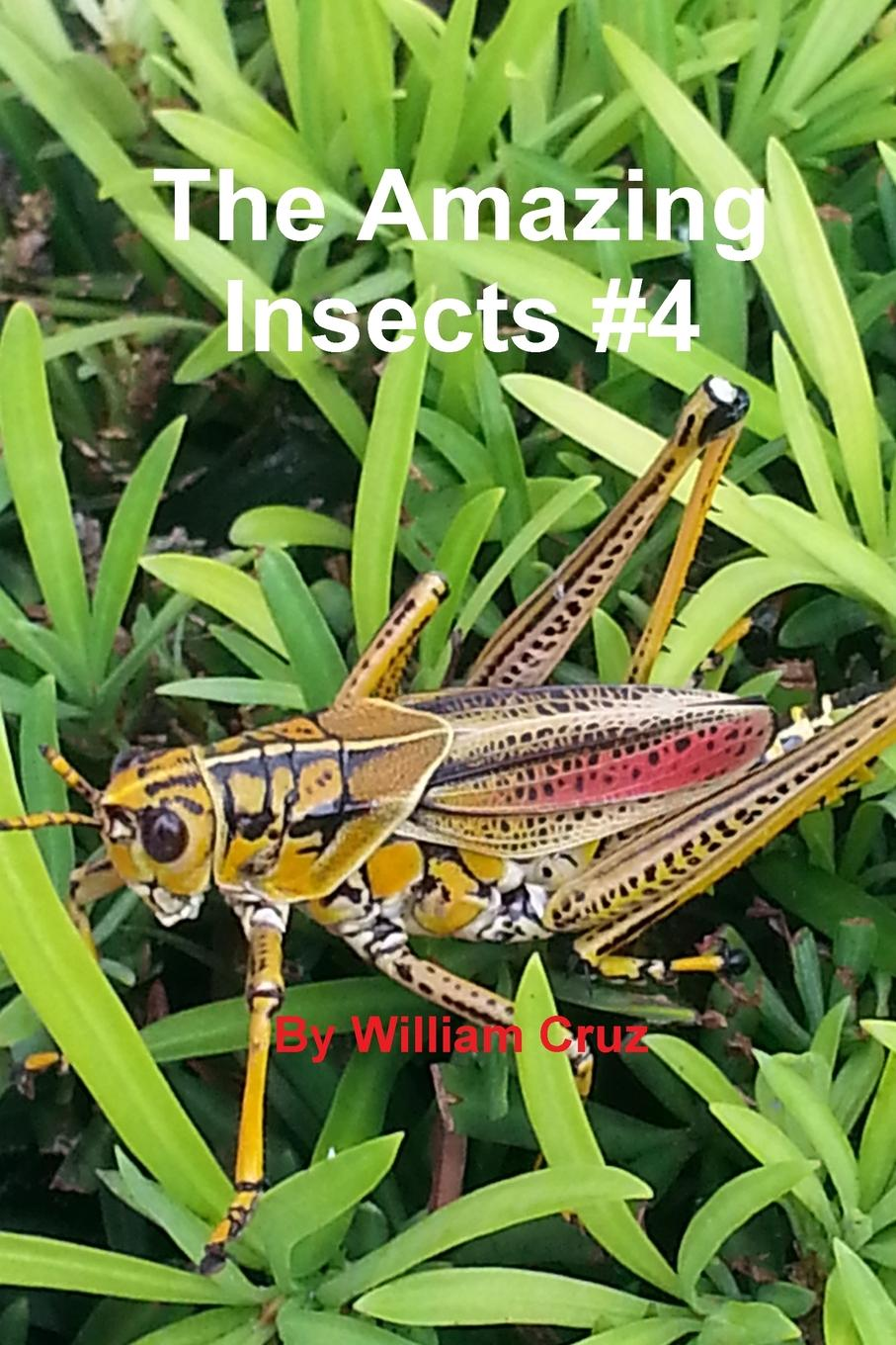 William Cruz The Amazing Insects .4 and you will know us by the trail of dead and you will know us by the trail of dead worlds apart