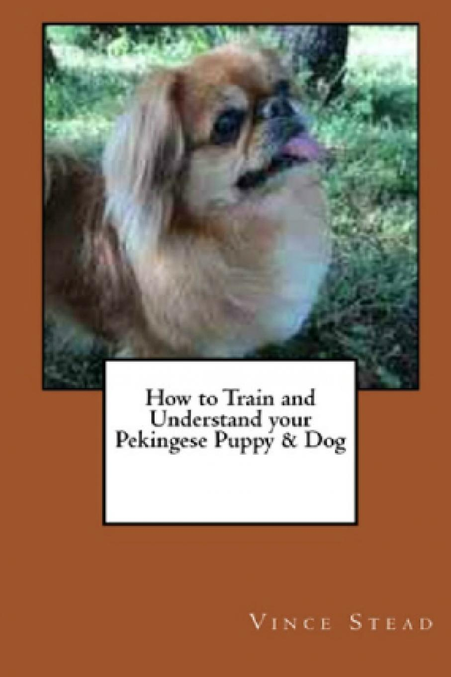 Vince Stead How to Train and Understand your Pekingese Puppy . Dog how to teach your baby math