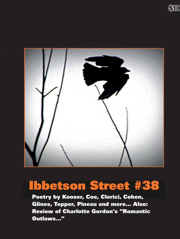 Doug Holder Ibbetson Street .38 doug holder ibbetson street 37
