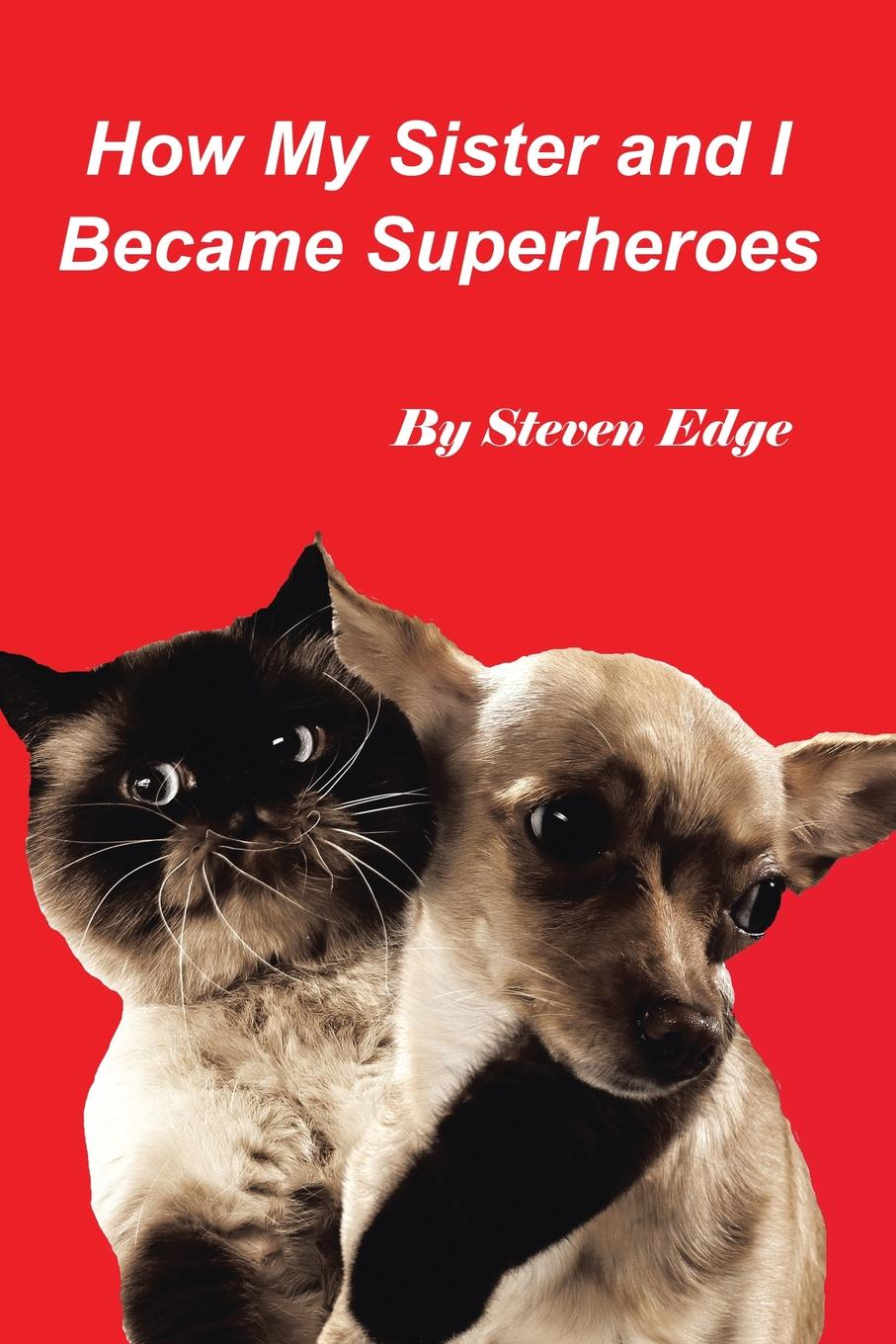 Steven Edge How My Sister and I Became Superheroes stan lee s how to draw superheroes