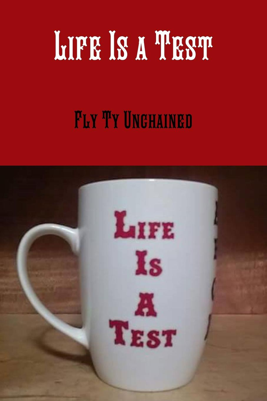 Fly TY Unchained Life.s a Test ellen glatstein i have a problem how to solve any problem any time second edition