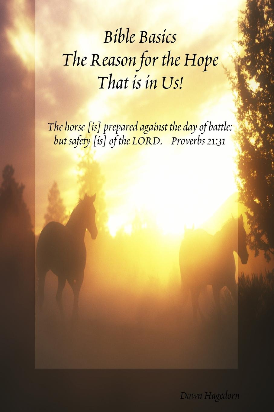 Dawn Hagedorn Bible Basics - The Reason for the Hope That is in Us. dawn atkins simply sex
