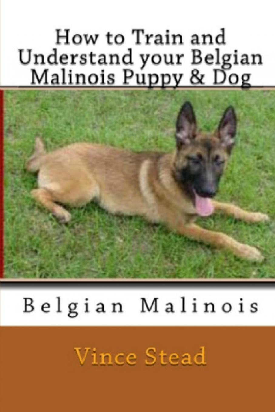 Vince Stead How to Train and Understand Your Belgian Malinois Puppy . Dog цена