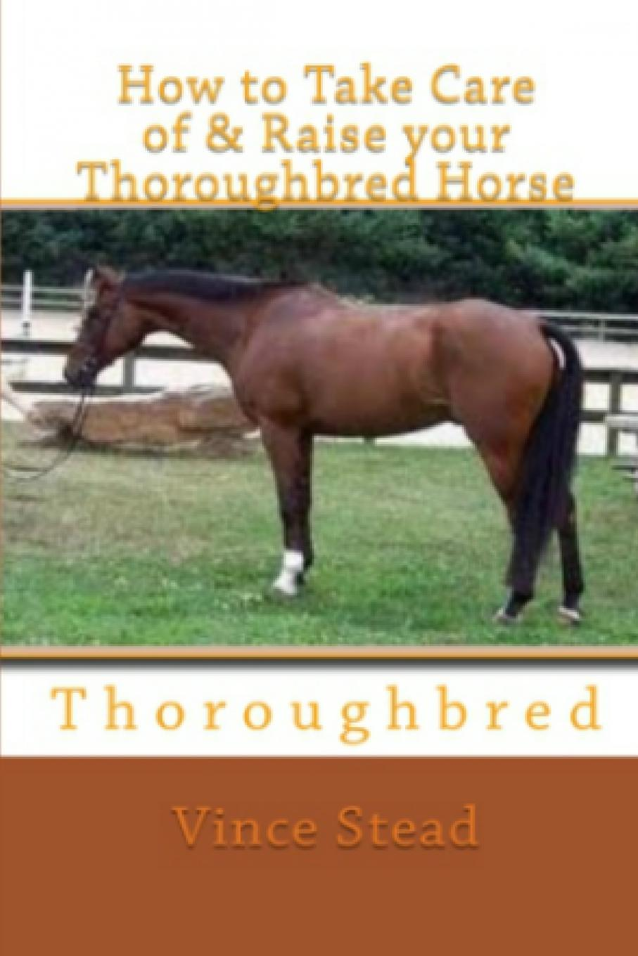 Vince Stead How to Take Care of . Raise your Thoroughbred Horse