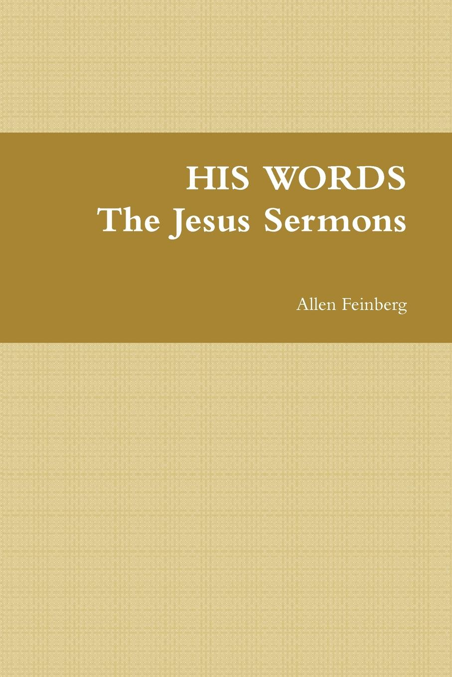 Allen Feinberg His Words the Jesus Sermons frederick j murphy an introduction to jesus and the gospels