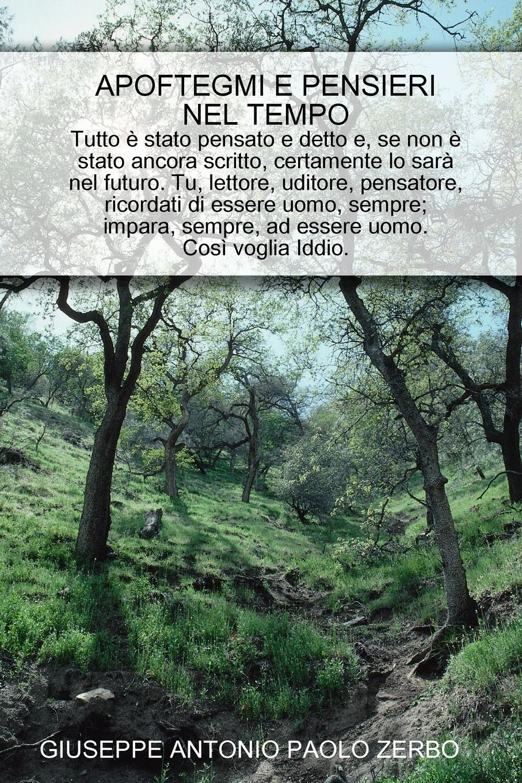 Giuseppe Zerbo APOFTEGMI E PENSIERI NEL TEMPO rosanna ripamonti piccoli pensieri e penseer piscinitt