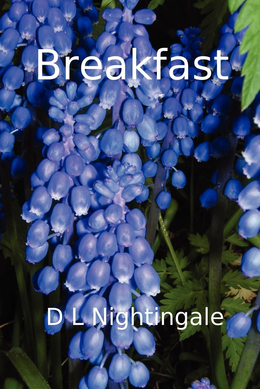 D. L. Nightingale Breakfast chloe seager editing emma online you can choose who you want to be if only real life were so easy