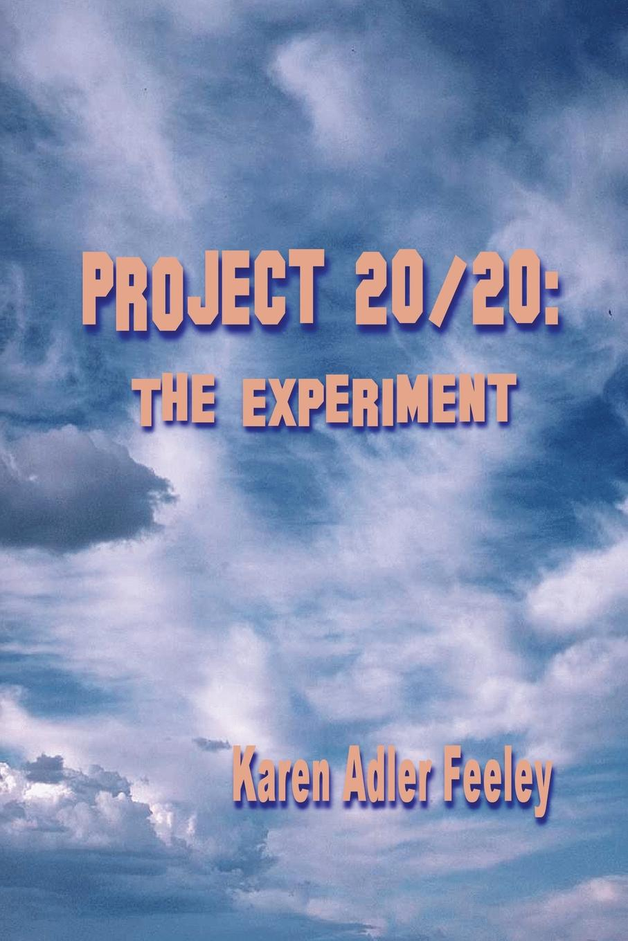 Karen Adler Feeley Project 20/20. The Experiment bob taylor guitar lessons a life s journey turning passion into business