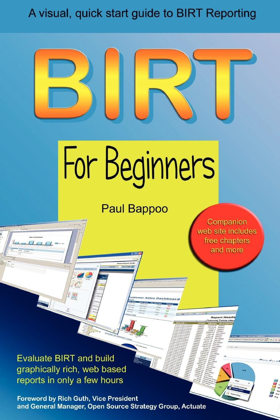 цены Paul Bappoo BIRT for Beginners