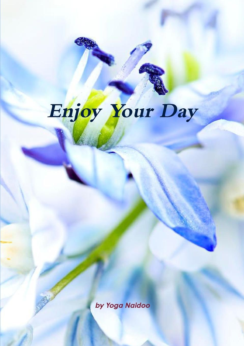 Yoga Naidoo Enjoy Your Day michael burchell no excuses how you can turn any workplace into a great one