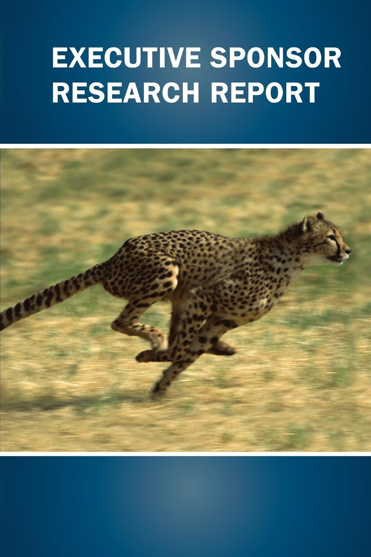 Executive Sponsor Research Report Executive Sponsor Research Report is a concise overview of the roles...