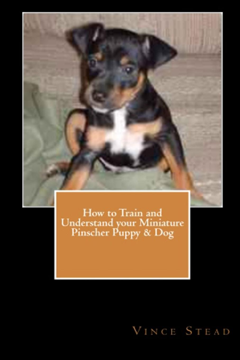 Vince Stead How to Train and Understand your Miniature Pinscher Puppy . Dog cuteroom dollhouse miniature dining room diy kit with cover and led