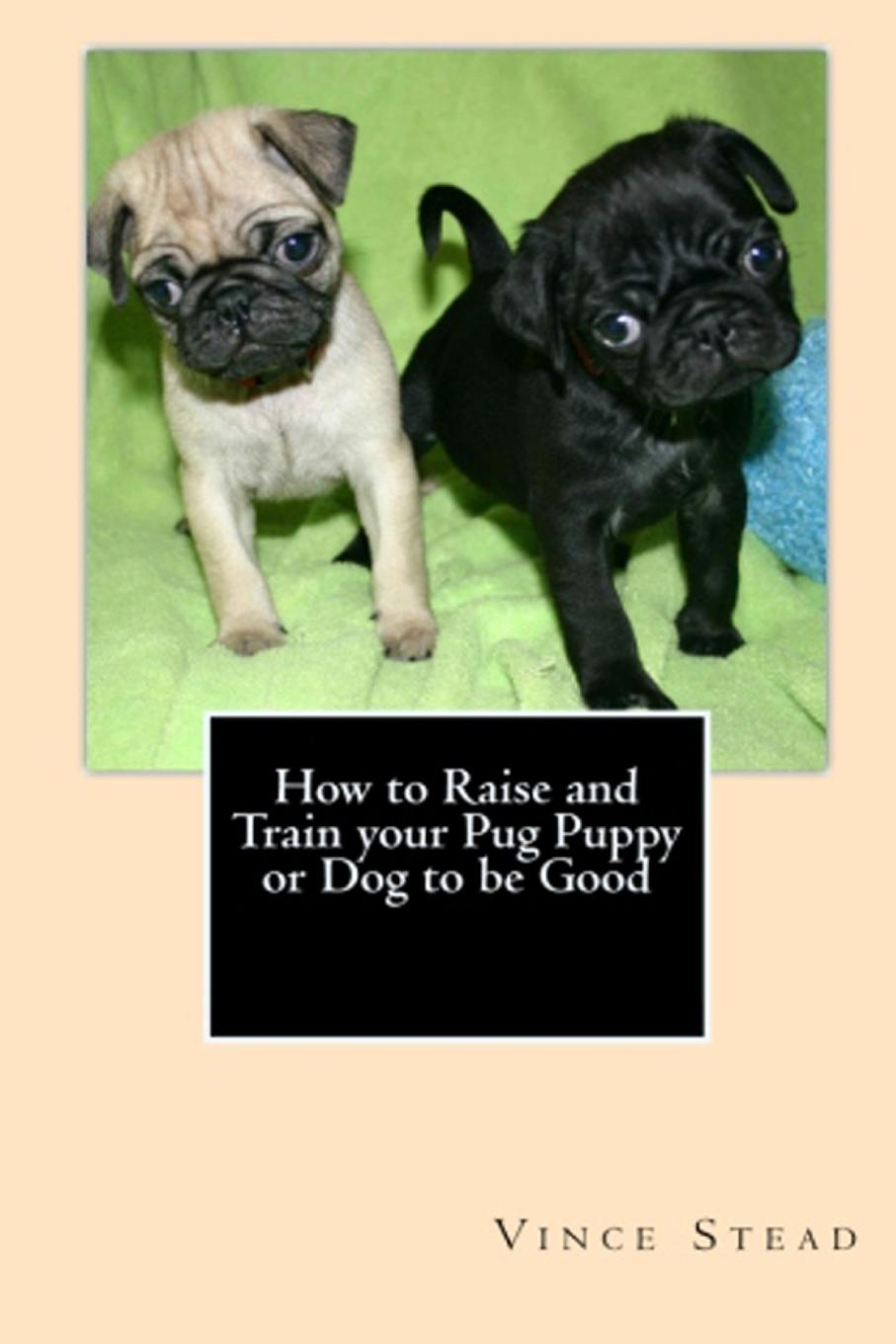 Vince Stead How to Raise and Train your Pug Puppy or Dog to be Good how to teach your baby math