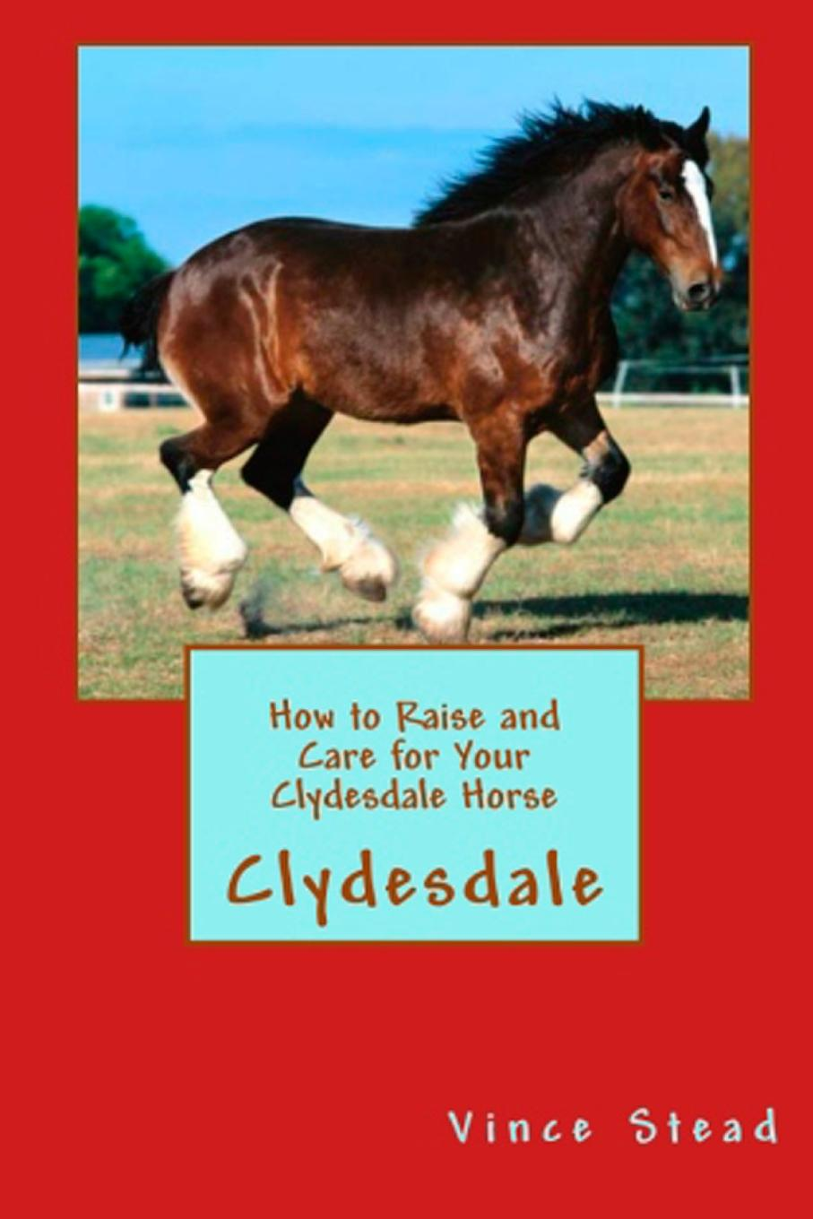 где купить Vince Stead How to Raise and Care for Your Clydesdale Horse по лучшей цене