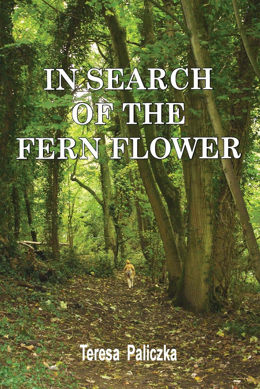 Teresa Paliczka IN SEARCH OF THE FERN FLOWER malcolm kemp extreme events robust portfolio construction in the presence of fat tails isbn 9780470976791
