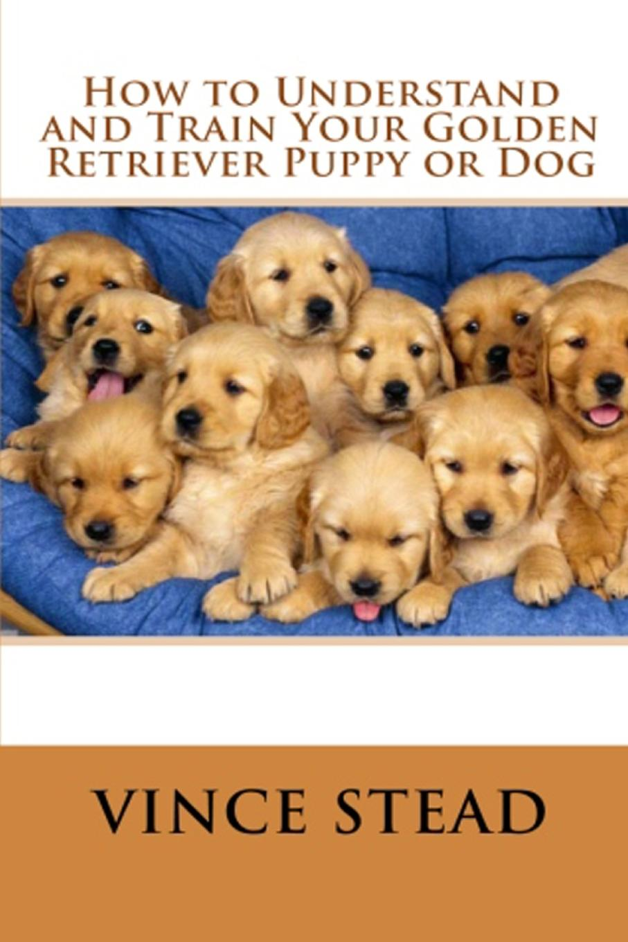 Vince Stead How to Understand and Train Your Golden Retriever Puppy or Dog vince stead how to understand and train your golden retriever puppy or dog