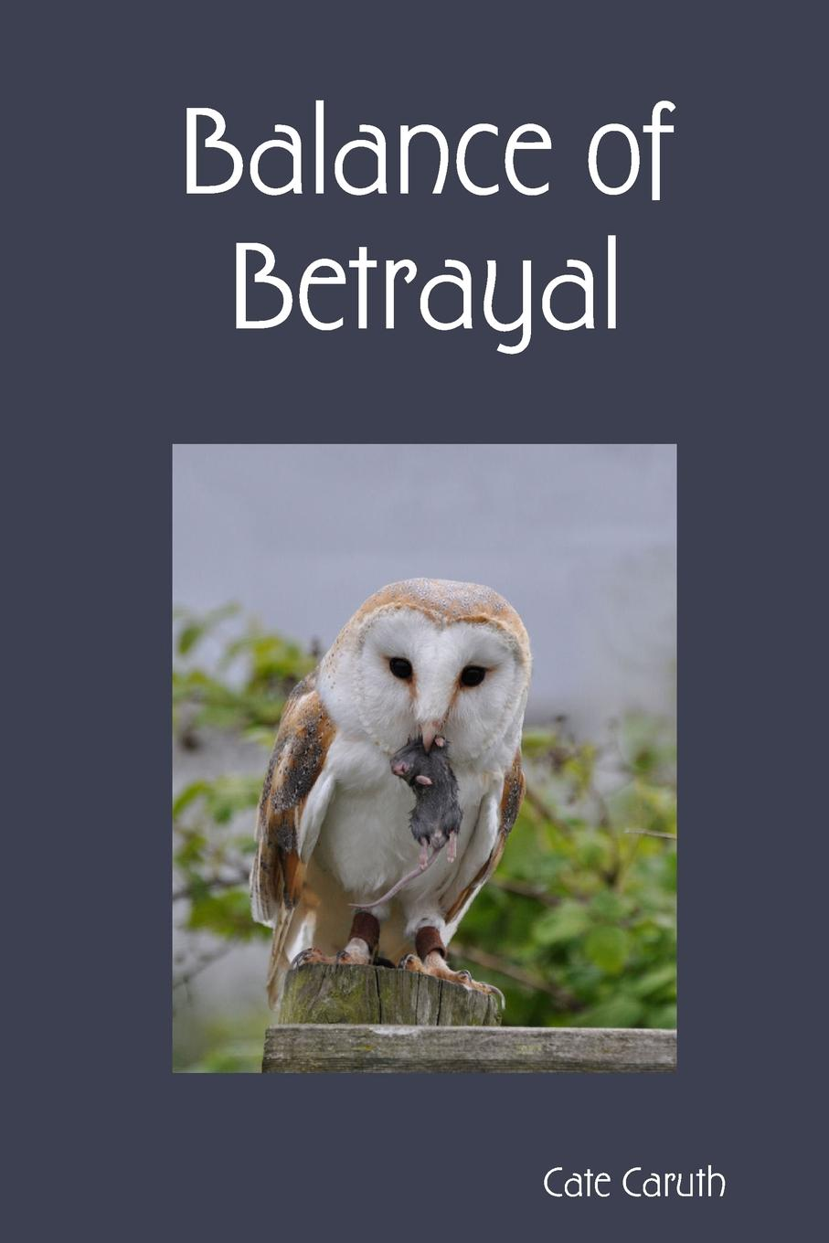 Balance of Betrayal Book three of the Bremmand ChroniclesIt is two years since the King...