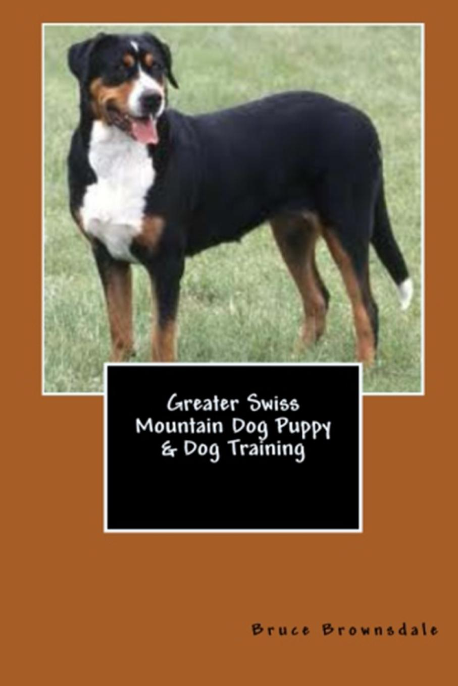 Vince Stead Greater Swiss Mountain Dog Puppy . Dog Training 20pcs lot tps61221dckr tps61221