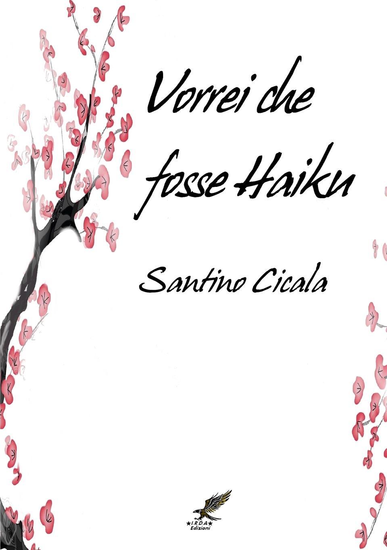 Santino Cicala Vorrei che fosse Haiku luca debiti da qui all eternita