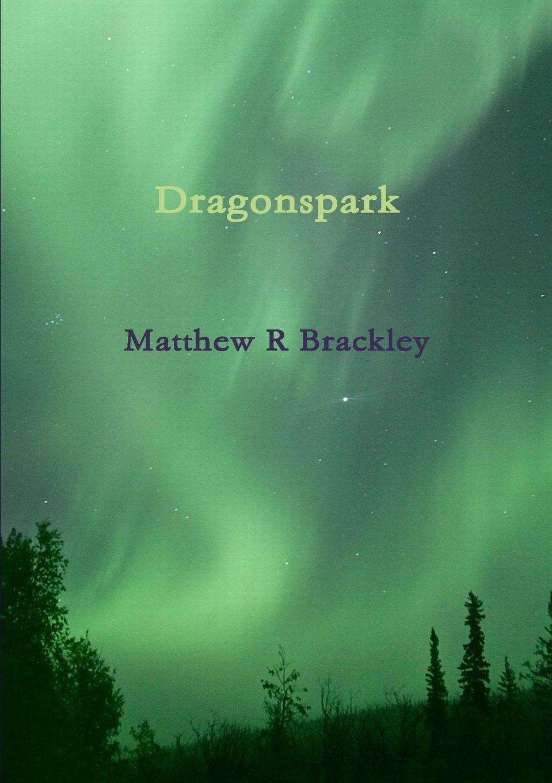 Matthew R Brackley Dragonspark wonderment the lisbeth zwerger collection