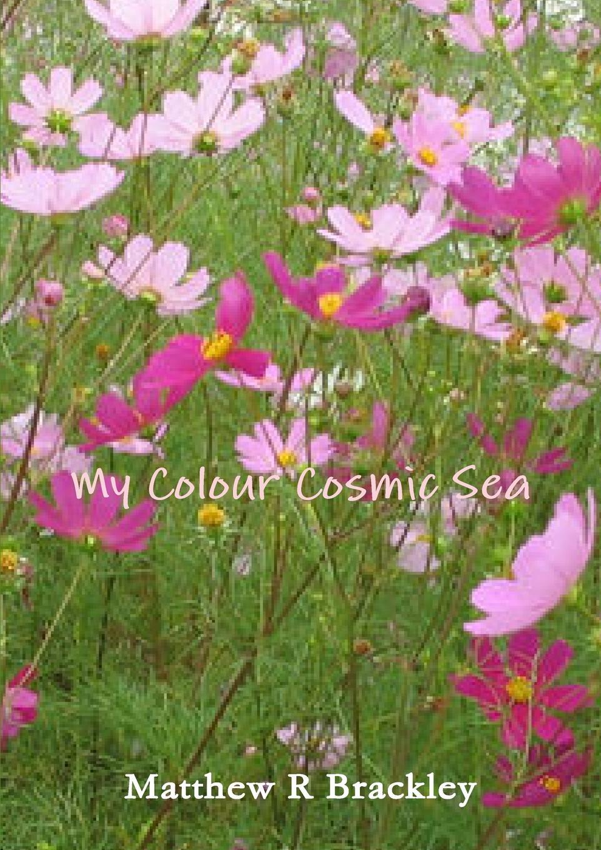 Matthew R. Brackley My Colour Cosmic Sea декоративный крючок birds and flowers at home sz204