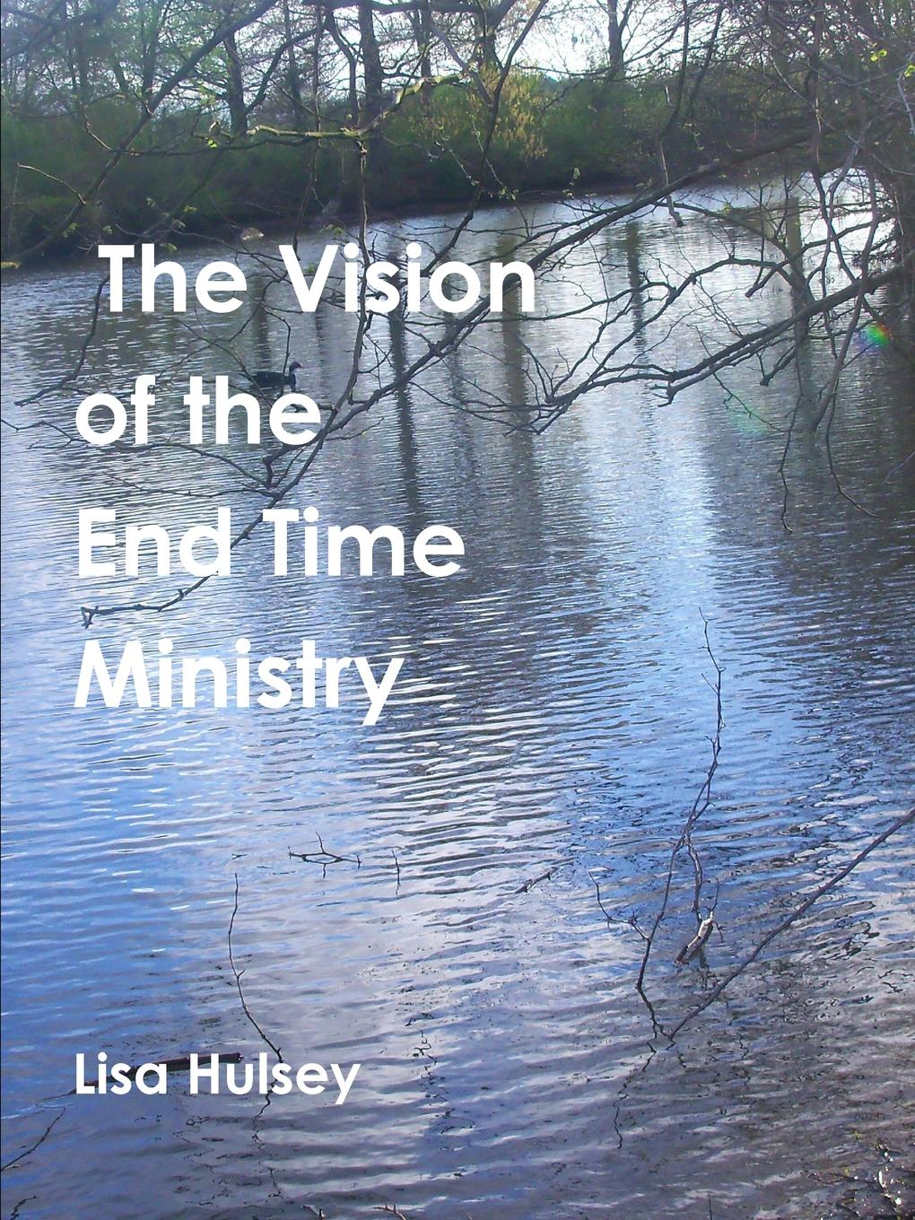 Lisa Hulsey The Vision of the End Time Ministry the eye of the world the wheel of time book 2 chinese edition 400 page