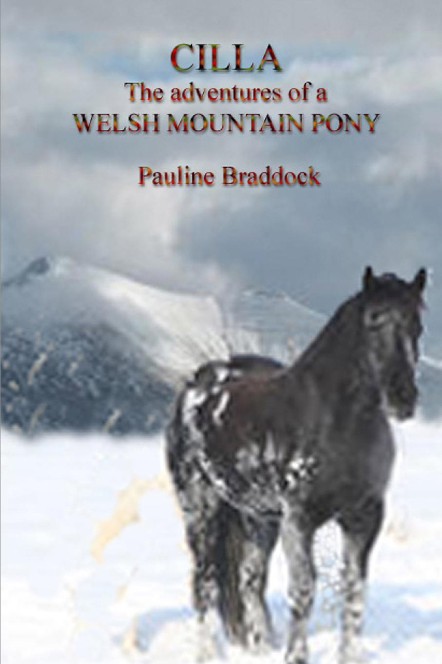 Pauline Braddock Cilla the Adventures of a Welsh Mountain Pony недорго, оригинальная цена