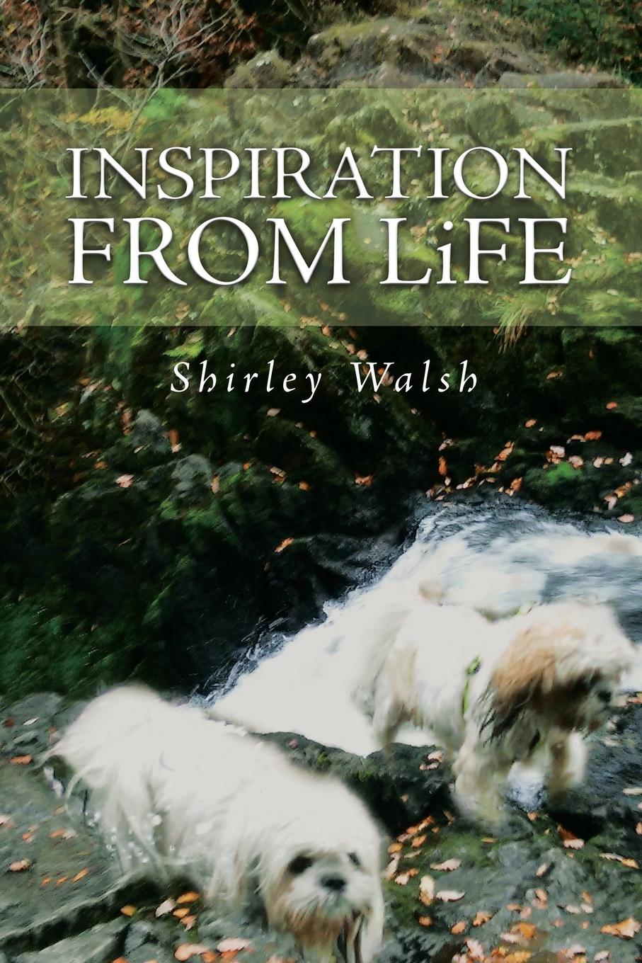 Shirley Walsh Inspiration from Life my first christmas