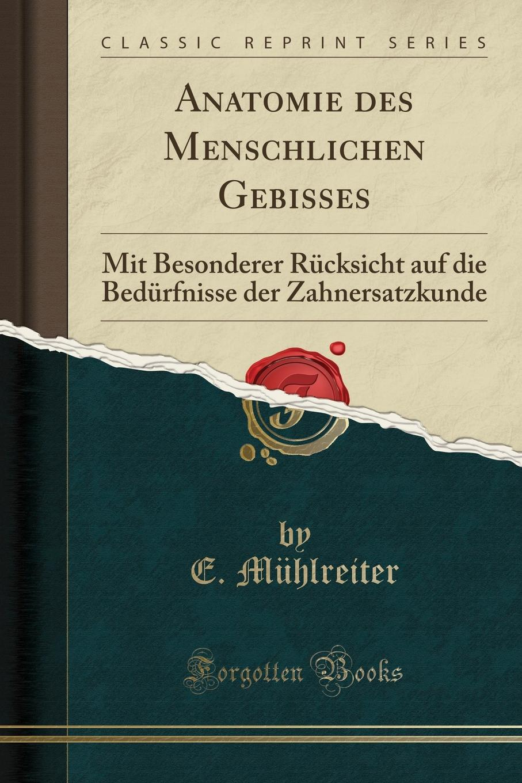 E. Mühlreiter Anatomie des Menschlichen Gebisses. Mit Besonderer Rucksicht auf die Bedurfnisse der Zahnersatzkunde (Classic Reprint)