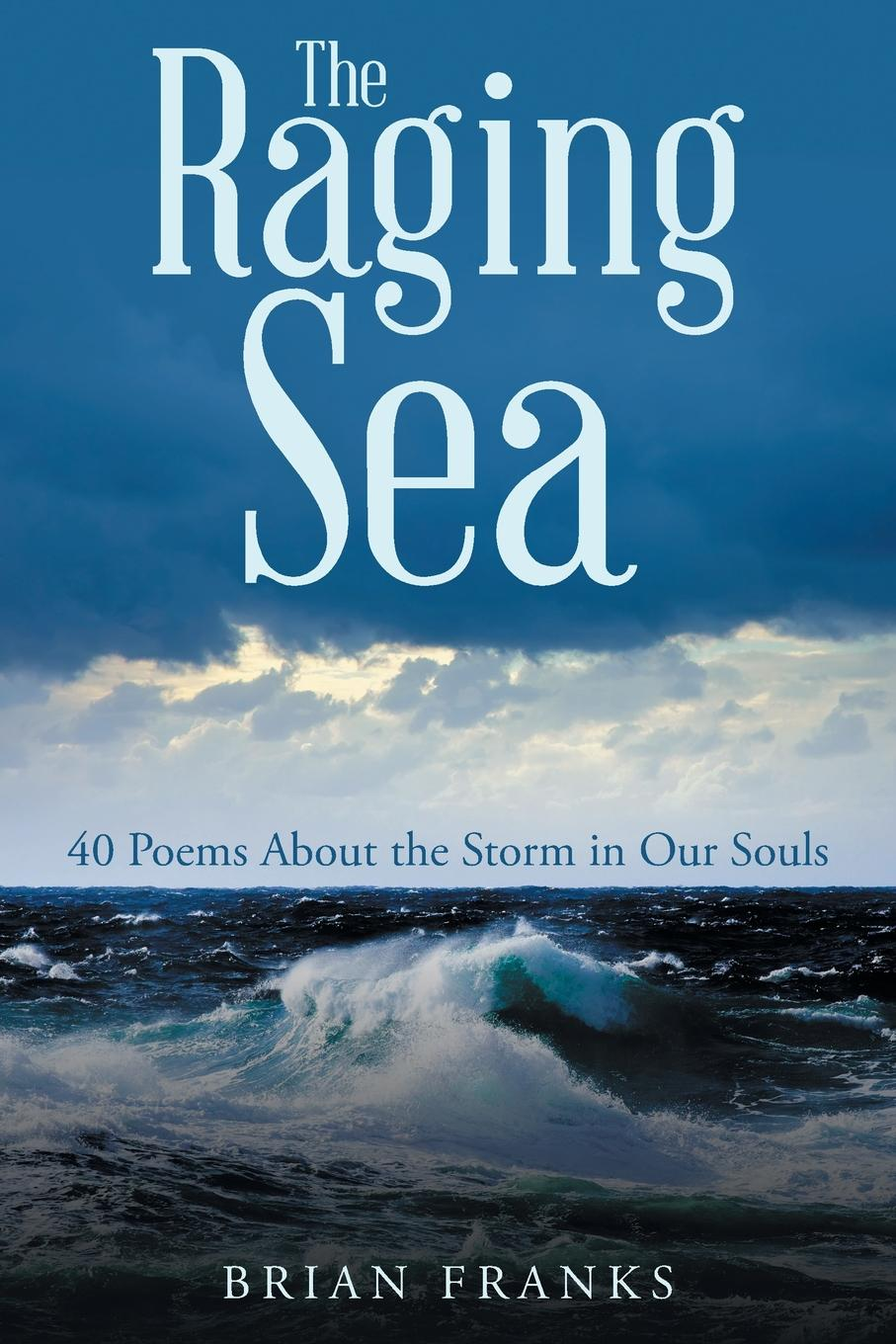 Brian Franks The Raging Sea. 40 Poems About the Storm in Our Souls brand new brand new the devil and god are raging inside me