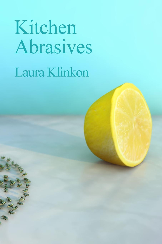 Laura Klinkon Kitchen Abrasives what i see