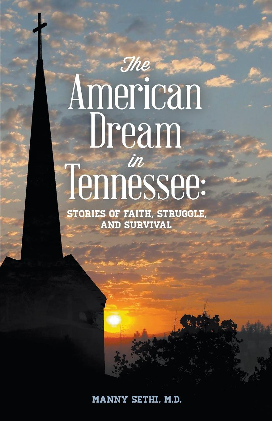 Manny Sethi American Dream in Tennessee. Stories of Faith, Struggle, and Survival ralph j carlson talent unleashed ii powerful stories of men and women whose faith perseverance determination drive optimism and ingenuity triumphed over all obstacles