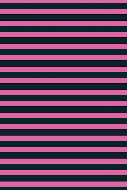 Lizzie Timewarp Notebook (black and pink striped) lizzie timewarp notebook pink and white striped