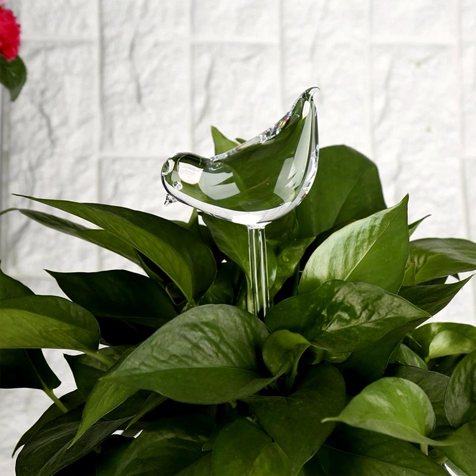 купить Лейка для комнатных растений Home Helper Bird, прозрачный по цене 590 рублей